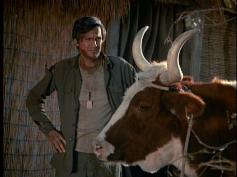 Still from the M*A*S*H episode Hawkeye showing Hawkeye and Margo the cow