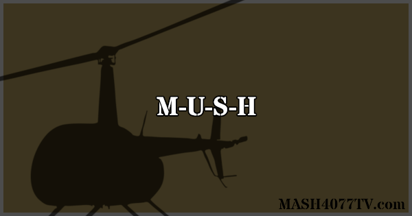 All about M-U-S-U-H, the animated spoof of M*A*S*H.